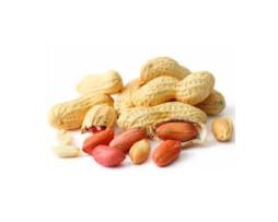 Peanuts - Raw in Shell